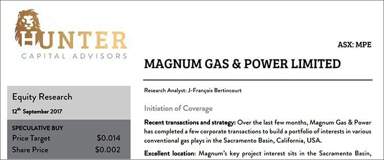 Magnum gas and power valuation