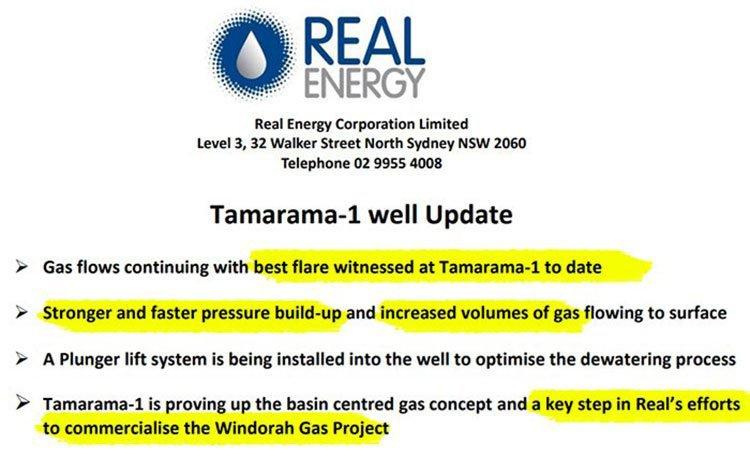 Tamarama update